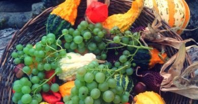 есенно пречистване с храна