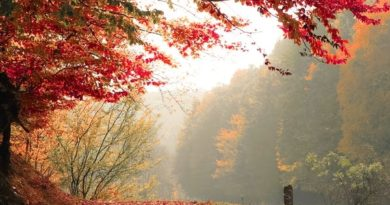 есенни предизвикателства бягства