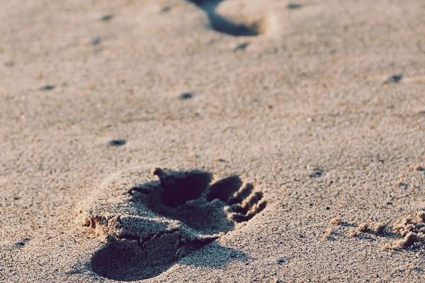 колко стъпки