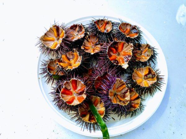 морски вкусотии