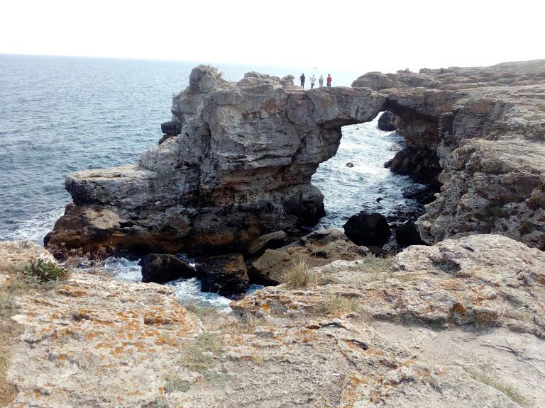 скала-тюленово