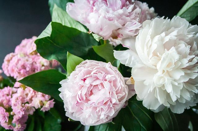 цветя към подаръка